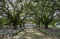 Whitney Plantation - north of NOLA, dedicated to representing the honest true history of slavery which is often missing from plantation tours today