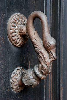 knocking swan...