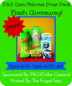 Giveaway: Gain/Febreze Prize Pack w/  Dollar General Gift Card