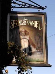 Inn sign for the Springer Spaniel pub in Cornwall UK