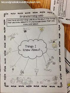 Create Dream Explore: Teaching Writing by the Trait: Generating Ideas! Teaching Letters, Teaching Writing, Procedural Writing, Teaching Ideas, Writing Rubrics, Student Teaching, 3rd Grade Activities, Writing Activities, Writing Ideas