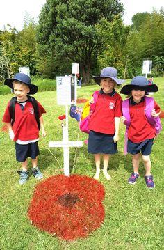 2017 Armistice Day Poppy Art - visit from the Matakana School.