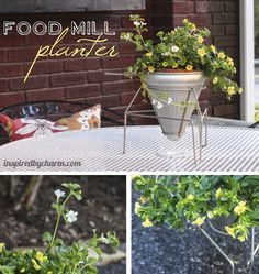 Food Mill turned into a  Planter
