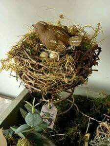 Sweet little bird nest cradled in an old bed spring