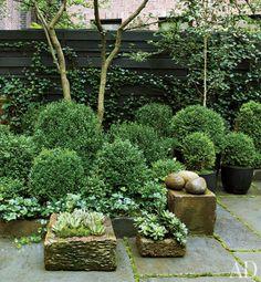 Julianne Moore's Verdant New York City Garden