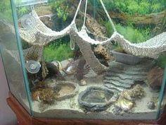 Pretty hermit crab habitat with handmae nets. Hermit Crab Cage, Hermit Crab Homes, Hermit Crab Habitat, Hermit Crabs, Hamsters, Gerbil, Ferret, Leopard Gecko Habitat, Bearded Dragon Terrarium