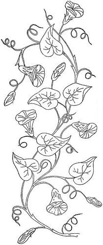 morning glory for hand embroidery pattern - Google Search