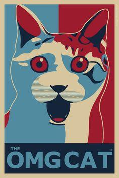 LOL Amazing cat  .  http://curioos-arts.tumblr.com/post/2909625014/maicon-mcn-brazil-http-bit-ly-esrndd