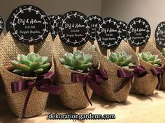 Succulent Wedding Favors, Wedding Favours, Fall Wedding, Rustic Wedding, Our Wedding, Floral Centerpieces, Flower Arrangements, Havanna Party, Wedding Gifts For Guests