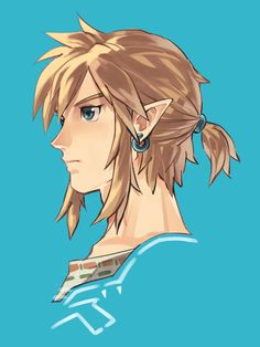 Link Link Botw, Ben Drowned, Legend Of Zelda Breath, Link Zelda, Breath Of The Wild, Mystic Messenger, Game Art, Fantasy, Video Game