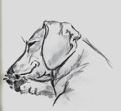 """Learn additional relevant information on """"dachshund pups"""". Look at our web site. Dachshund Drawing, Dachshund Tattoo, Arte Dachshund, Dachshund Puppies, Dachshund Love, Weenie Dogs, Doggies, Dog Art, Dog Life"""