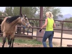Get Liberated Episode 1 Backing Up. I really like the way this lady works with horses! Fun to watch, and very educational.