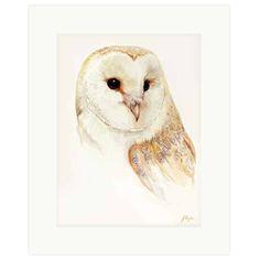 Portrait of a Barn Owl by Jan Taylor  https://www.barnowltrust.org.uk/product/portrait-barn-owl-jan-taylor/