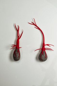 """""""Bulbi"""" by Andrea Graham I have done bulb type sculptures of clay. I would be nice to explore them in felt. Wet Felting, Needle Felting, Felt Wall Hanging, Textiles, Textile Fiber Art, Soft Sculpture, Wall Sculptures, Yarn Bombing, Fibres"""
