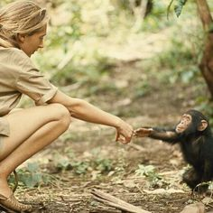 Drawing from never-before-seen footage that has been tucked away in the National Geographic archives, director Brett Morgen tells the story of Jane Goodall, a woman whose chimpanzee research revolutionized our understanding of the natural world. National Geographic Society, National Geographic Archives, Jane Goodall, Tanzania, Roman Photo, Reasons To Smile, Natural World, Movies, Films