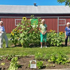 Our ladies at Carp Commons Retirement are taking advice from a sunflower: Be Bright, Sunny and Positive. Spread seeds of happiness. Rise, Shine and hold your head high! 😊 #vervecares #coomunity #goodtimes #summervibes Senior Living, Carp, Summer Vibes, Good Times, Retirement, Seeds, Happiness, Advice, Outdoor Structures