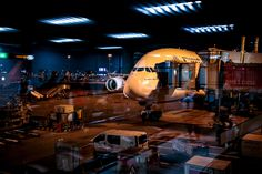 Have you experienced more than 3 hour flight delay due to delayed, cancelled or overbooked flight when departing from Amsterdam Schiphol Airport? Under EU 261 law you may receive flight compensation - check the conditions. Amsterdam, Bird Strike, Best Flights, Flight Compensation, Airports, Law, Bowties