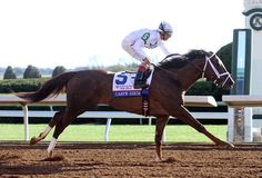 Kentucky Derby 2015: Carpe Diem will remain at Keeneland and then ship to Churchill to train before the Kentucky Derby. With 161 points, Carpe Diem is...