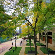 do you want the truth or something beautiful? as predicted ... I replied beautiful … and this is what I got ... :) #PureHappiness #Chicago #Pretty #Colors #FallColors #Fall2015 #LovelyEvening #ChicagoRiver #RiverWalk #Fall2015 #AwesomeOctober #HappyThursday #SweetTimes #GoodMemories #Nature #CityLife #WindyCity #Pure #Happiness