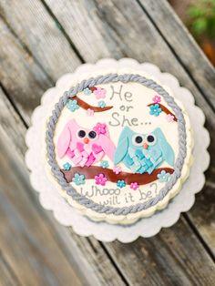Owl themed gender reveal cake