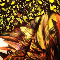 Badgley Mischka embroidery close-up #bgBadgley.