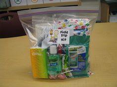 DIY Field Trip Kit: Ziploc bags (gallon & sandwich), Kleenex, Medical Gloves, Bandaids, Hand Sanitizer, Disinfectant Wipes, Small Snack