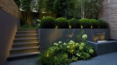 layered garden design with up lighting  | adamchristopherdesign.co.uk