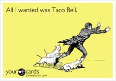 Taco bell funny quirky wedding and wedding poses on pinterest