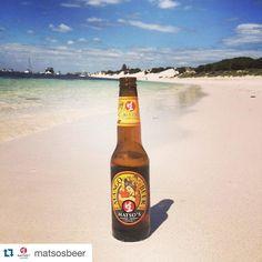 Winter's dragged on a bit long here in #HongKong!  #Repost @matsosbeer  Happy Weekend from #Rotto ! Cheers Ryan for the photo  #MangoBeer #fruitbeer #westernaustralia #seeaustralia #rottnestisland #thisiswa #wabeaches #beerstagram #instabeer #summer #craftbeer #beer #bier #biere #beach #tan by bestbevhk http://ift.tt/1L5GqLp