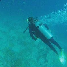Scuba diving The Great Barrier Reef  #scubasteve #findthebeauty #greatbarrierreef #findingnemo #adventure #explore #ocean #scuba #findmeoutside #explore #australia #fish #water #stoked by vonn_91 http://ift.tt/1UokkV2