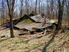 The old Algerine cabin back behind Bell School sliding back into the earth.