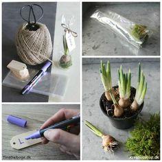 Køb hobbyartikler til en god pris online Asparagus, Fester, Table Settings, Reception, Planters, Vegetables, Party, Diy, Decor