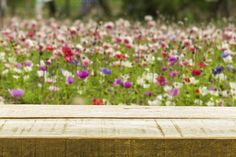 Wood table on garden flower