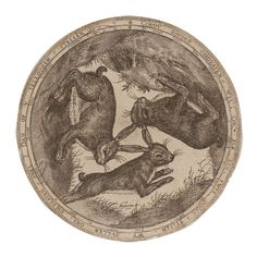 A circular print from 1576 showing three views of a rabbit or hare, by an anonymous artist. Rabbit Run, Animal Art Prints, Japanese Waves, March Hare, Season Of The Witch, Museum Shop, Celtic Designs, British Museum, Art Reference