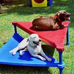The climb and sit is the perfect addition for every dog park. Get yours today at www.parknpool.com
