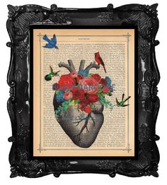 Etsy listing at https://www.etsy.com/listing/108137440/anatomical-heart-art-print-heart-anatomy