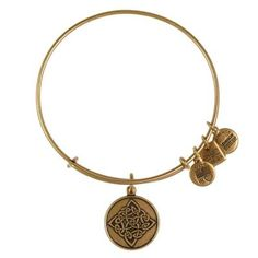 Connection   Community   Resilience Alex and Ani Celtic Knot Charm Bangle