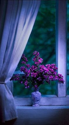 the Violet hour ~