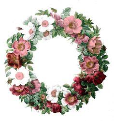 Free Vintage Clip Art - Rose Wreath - The Graphics Fairy #Printable #Vintage #Floral