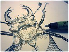 Lucanus cervus - Stag beetle by Denis Pakowacz, via Behance