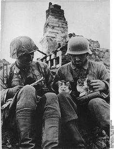 German grenadiers in Soviet village with kittens, August 1943