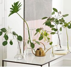 Urban Jungle Bloggers: Plants & Glass by @design3000