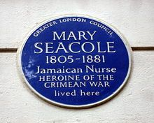 The HooteSuite video below, though it is primarily discussing businesses, clearly explains the importance of social media connectedness for non-profits and any type of organization. Also, how a social media campaign got Mary Seacole back on the UK educational curriculum.