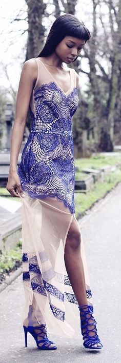 Lace And Sheer Maxi Inspiration Dress