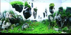 L'art des jardins aquatiques ou l'art de jardiner sous l'eau