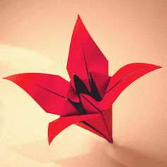 fácil crianças simples diversão The Origami Tulip is a great traditional model, and quite simple. It makes a bea. The Origami Tulip is a great traditional model, and quite simple. It makes a beautiful display when paired with the Flower Stem. Origami Design, Easy Origami Flower, Instruções Origami, Origami Butterfly, Useful Origami, Origami Stars, Origami Flowers, Paper Flowers, Basic Origami