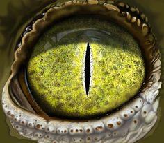 David Icke : Revelations Of A Mother Goddess - Part 1 Lizard Eye, Reptile Eye, Eye Images, Eye Close Up, Eyes Wallpaper, Photos Of Eyes, Mother Goddess, Reptiles And Amphibians, My Animal