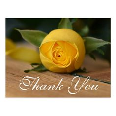Shop Script Yellow Rose Thank You Card created by tjk_creative. Thank You For Birthday Wishes, Thank You Wishes, Thank You Greetings, Thank You Pictures, Thank You Images, Love You Images, Say Thank You Quotes, Thank You Messages Gratitude, Thank U Cards