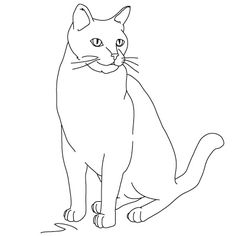 Google Image Result for http://www.my-how-to-draw.com/images/how-to-draw-cats_19.jpg