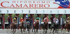 Que qué? Hacienda embarga cuentas de Hipódromo Camarero...